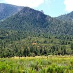 Property For Sale Pine Valley Utah