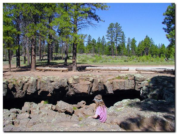 Dixie National Forest: Cedar Mountain for kids | National ...