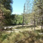 Mobile Homes For Sale In Ponderosa Pines Grass Valley Ca