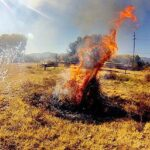 Pine Valley Campground Fire Restrictions