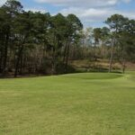 Pine Needles Country Club Fort Valley Ga