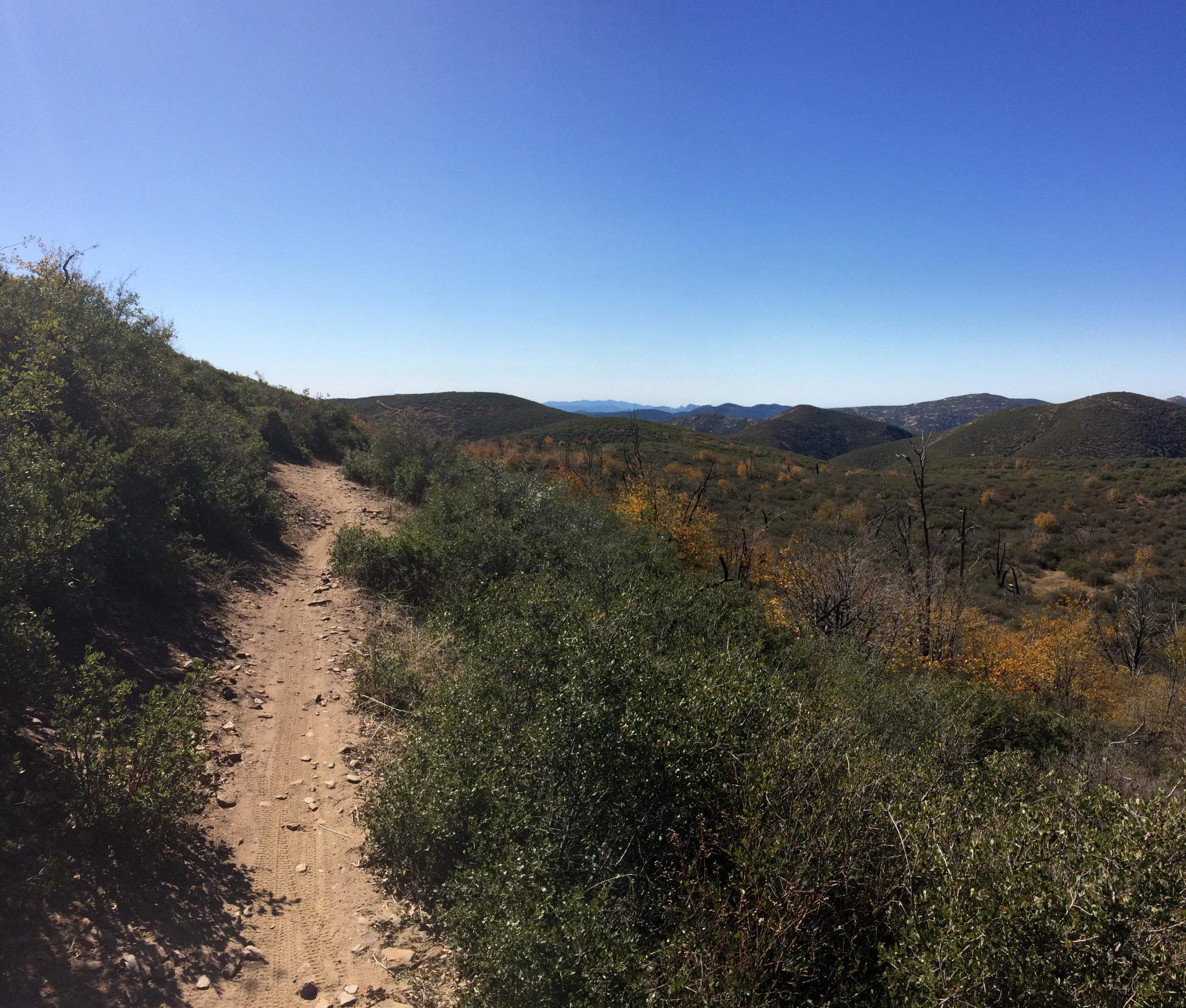 Mount Laguna Recreation Area Mountain Bike Trail in Pine ...