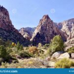 Pine Valley Red Rock