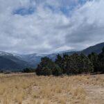 Pine Valley Farms Llc Utah