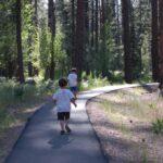 Trails In Pine Valley Utah