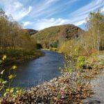 Pine Creek Valley Cabin Vacation Home For Sale Waterville