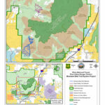 Pine Valley Mountain Recreation Camp Ground Map