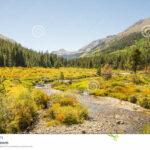 Pine Valley To Alpine