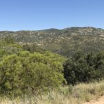 Noble Canyon Trailhead Pine Valley Ca