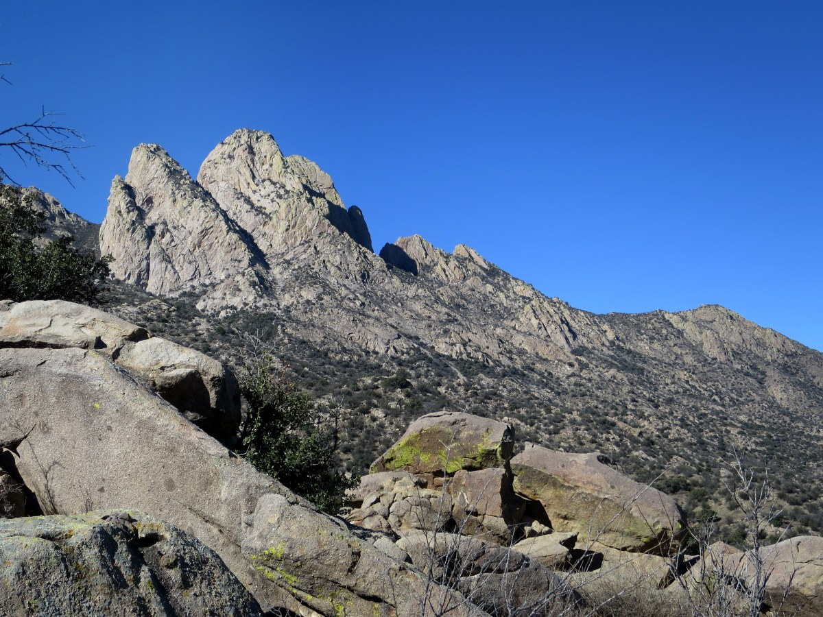 Pine Tree Trail, Aguirre Springs National Recreation Area ...