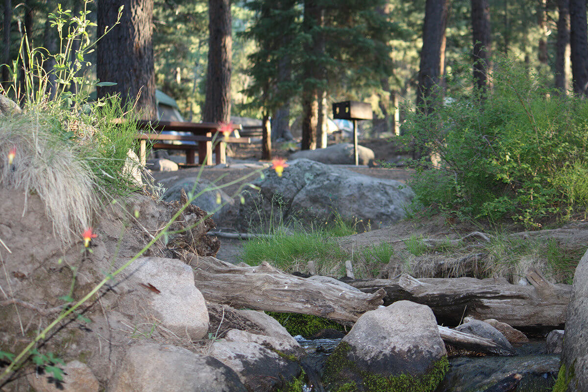 Pine Valley Recreation Area Campgrounds - Greater Zion Lodging