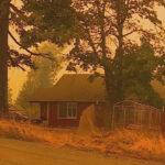 Pine Valley Mountain Washington County Fire