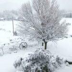 Pine Valley Utah Winter