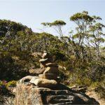 Pine Valley Hut Tasmania