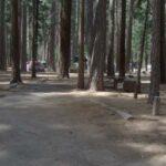Yosemite Valley Lower Pines Campground