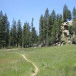 Camping Near Pine Valley Californai