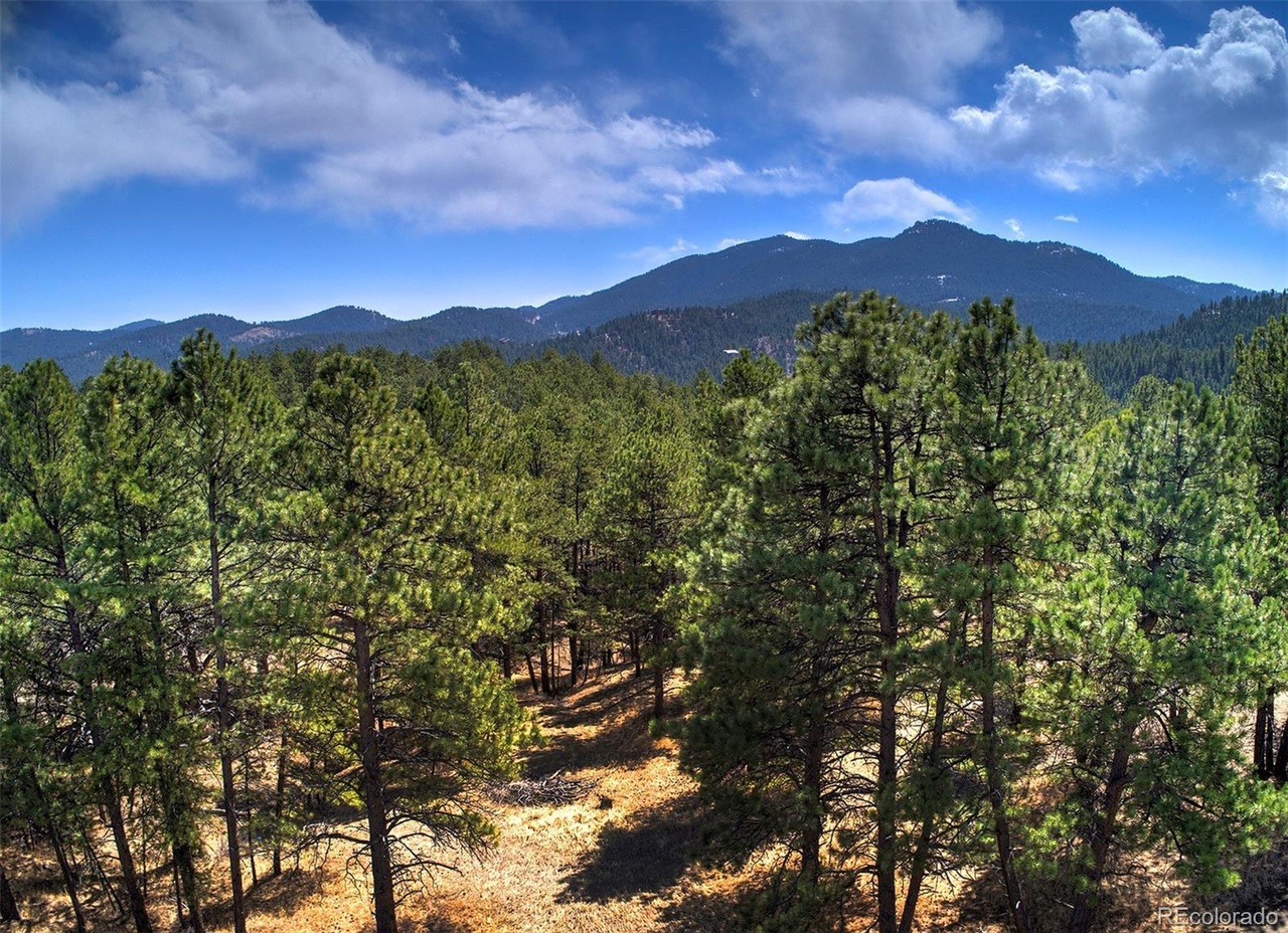 27444 Pine Valley Dr, Evergreen, CO 80439 | MLS# 9721763 ...