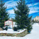 Pine Valley Tree Farm Sykesville Md