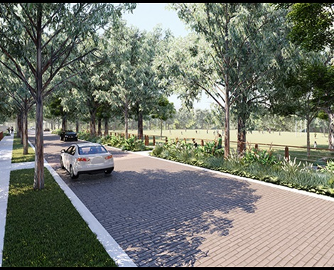 The Project, Pine Valley - Lendlease