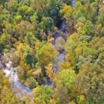 Pine River Valley Opportunity Collins