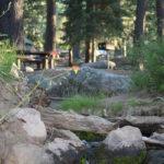 Yellow Pine Campground Pine Valley Utah