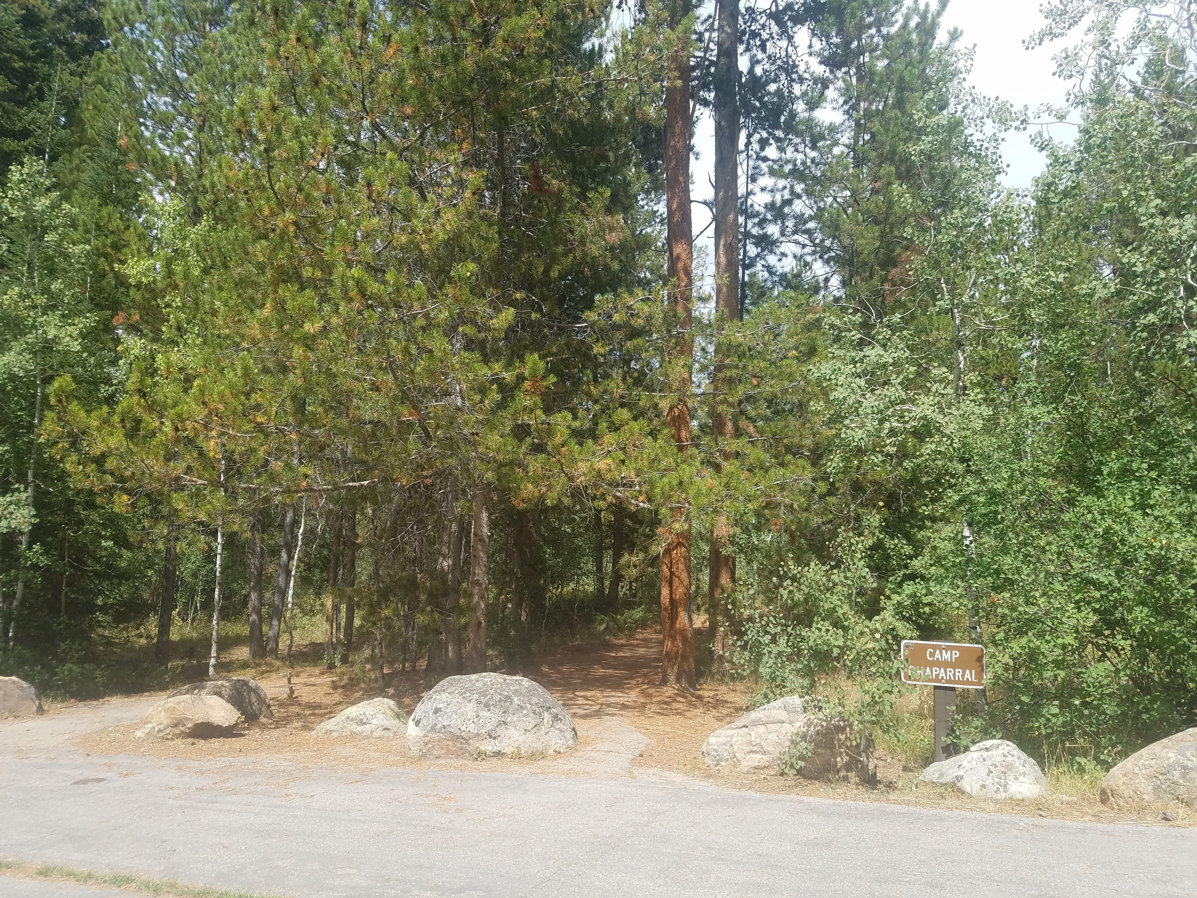 Pine Valley North Wasatch Cach, UT | The Dyrt