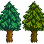 How To Get Pine Cones Without Chopping Tree Stardew Valley