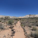 Pine Valley Mountain Utah Lava Flow