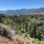 St George Utah To Pine Valley Utah