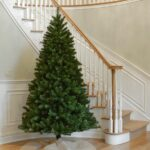 Valley Spruce Pine Christmas Tree