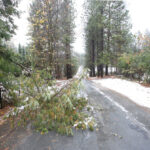 14800 Sky Pines Road Grass Valley Ca
