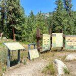 Pine Flats Campground Garden Valley Id
