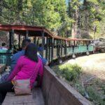 Sugar Pine To Yosemite Valley