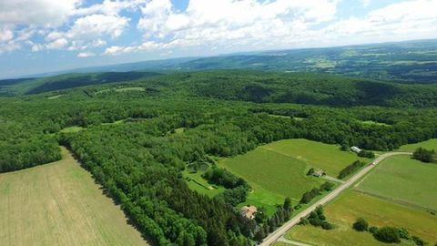 Pine Valley, NY Real Estate - Pine Valley Homes for Sale ...