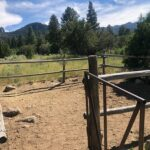Pine Valley Ranch Park Fishing Report