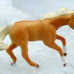 Pine Valley Ranch Quarter Horses Bathurst