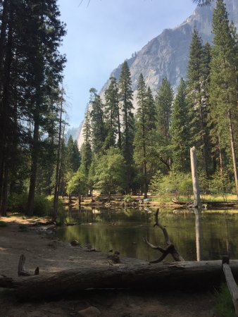 North Pines Campground - UPDATED 2017 Reviews & Photos ...
