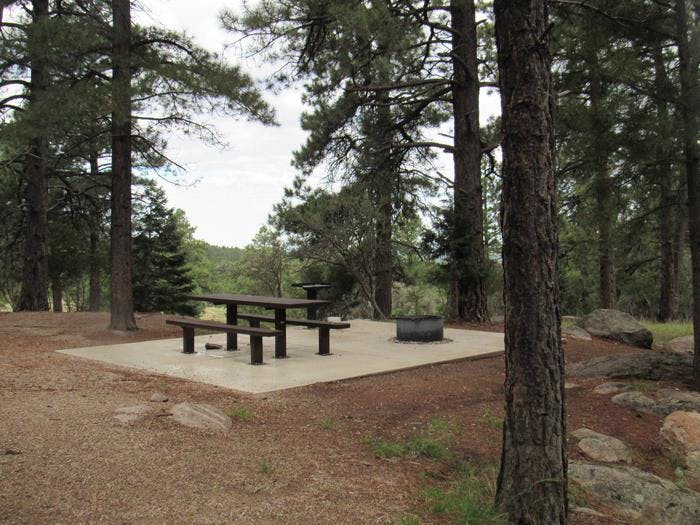 Pine Valley Recreation Area, UT | The Dyrt