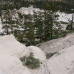 Camping In Pine Valley Utah July