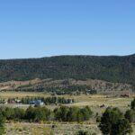 Pine Valley Firewood Permit Utah
