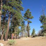 Pine Valley To San Bernardino