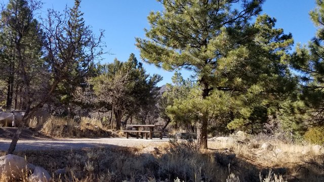 Pine Valley Equestrian Campground Reviews updated 2020