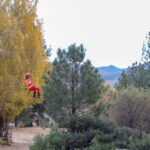 Events In Pine Valley Ca
