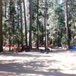 North Pines Campground 9024 Southside Drive Yosemite Valley Ca 95389