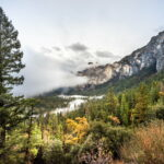 Parks In Pine Valley Ca