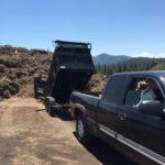 Heavenly Valley Free Pine Needle Dump
