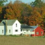 Pine Valley Country Store 8181 S Cornwell Ave Clare Mi