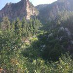 History Of Pine Valley Utah