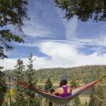 Pine Valley Utah Fishing Report
