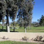 Pine Valley Association Dues